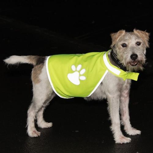Кучешка светлоотразителна жилетка