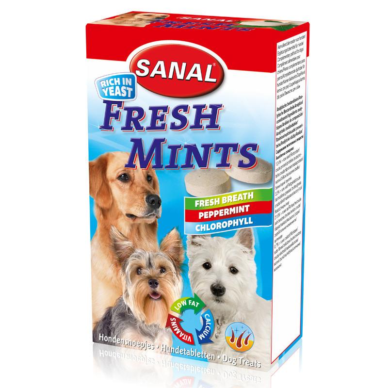 Хранителна добавка за кучета - Sanal Dog Fresh Mints - 100 гр.