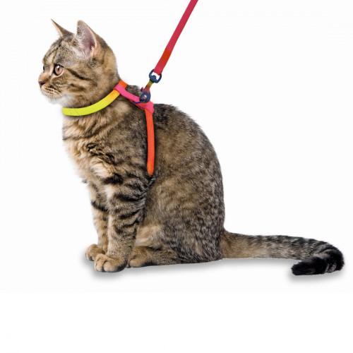 Комплект повод и нагръдник за котка - Kerbl Rainbow