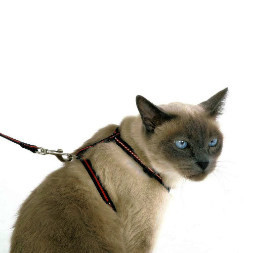 Комплект котешки нагръдник, повод и нашийник