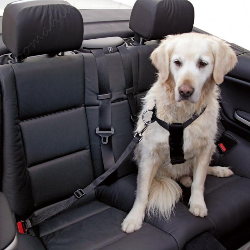 Кучешки нагръдник с предпазен колан за автомобил