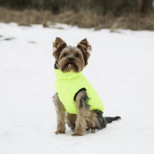 Палто за куче Charmonix