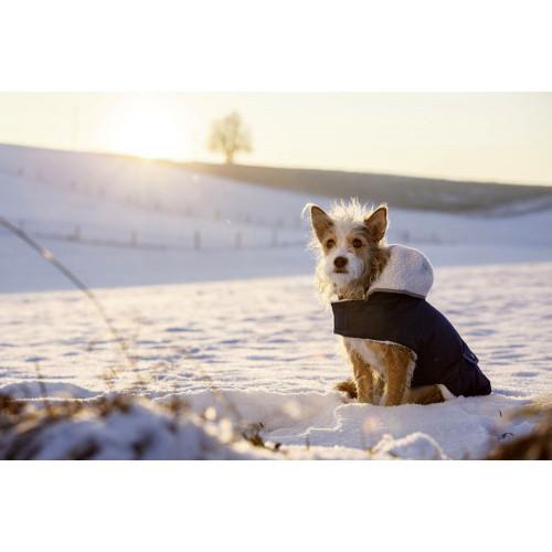 Качествено кучешко палто Teddy