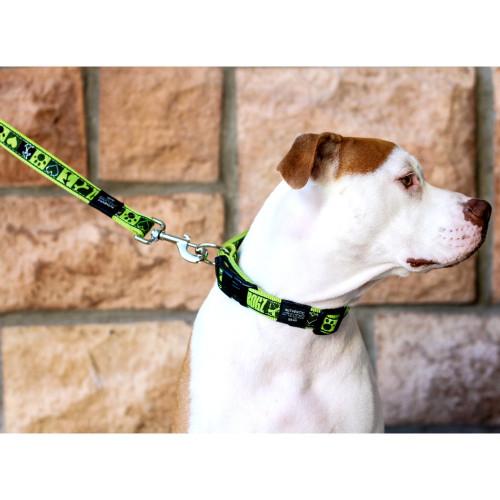 Класически кучешки нашийник Rogz Classic Collar - модна колекция Lime Juice