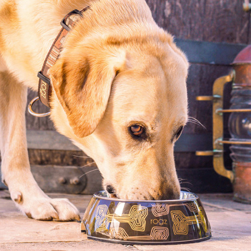 Кучешка купичка за храна и вода Rogz Bubble Bowlz - колекция Mocha Bones