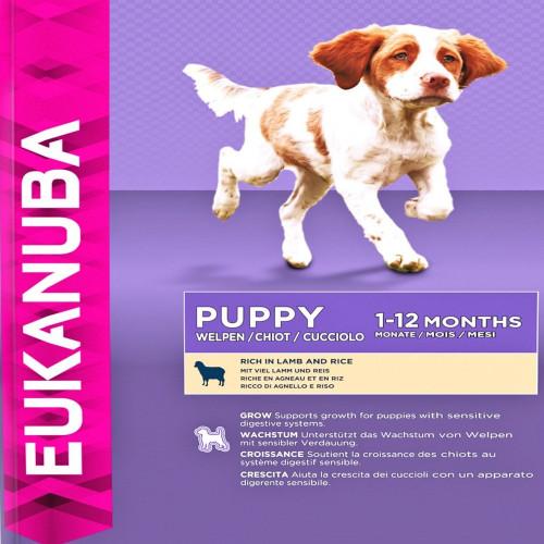 Храна за кутрета от всички породи Eukanuba Puppy Lamb and Rice - 15+3кг