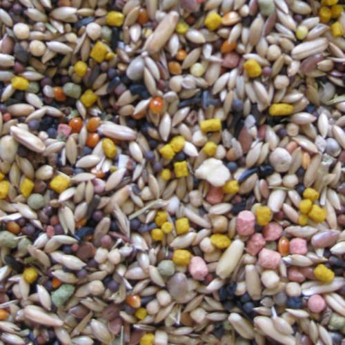 Качествена храна за канарчета Deli Nature 5 Star Menu Canaries - 800 гр