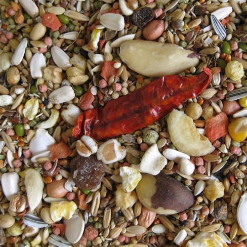 Качествена храна за Африкански папагали Deli Nature 5 Star Menu African Parrot - 800 гр